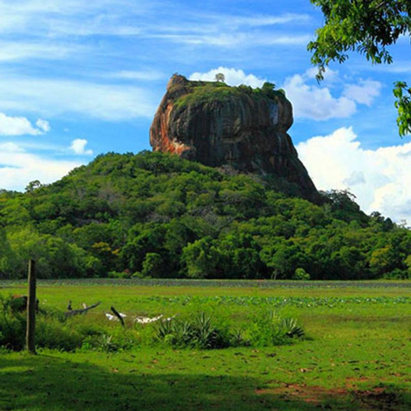 8th wander srilanka